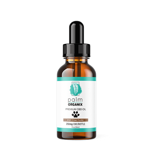 CBD-Tincture-pet-250mg-CBD-Oil
