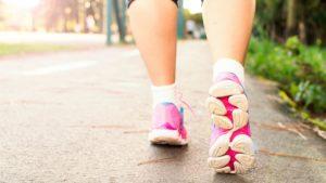 cbd and weight lose palmorganix
