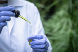 cbd oil testing guide