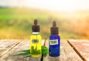 cbd oil vs thc