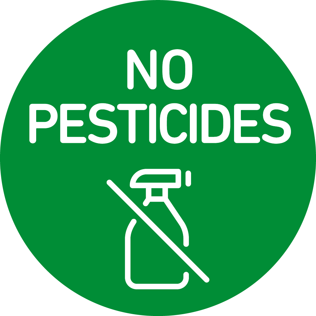 no pesticides